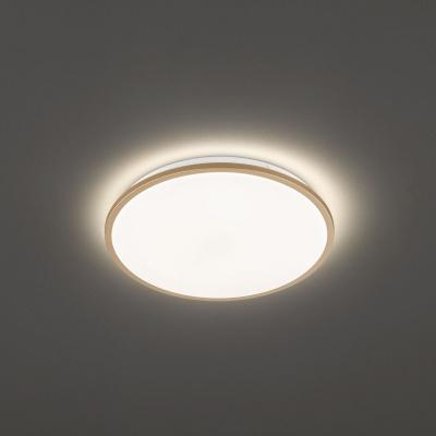 Stropnice/přisazené 1x LED 22W